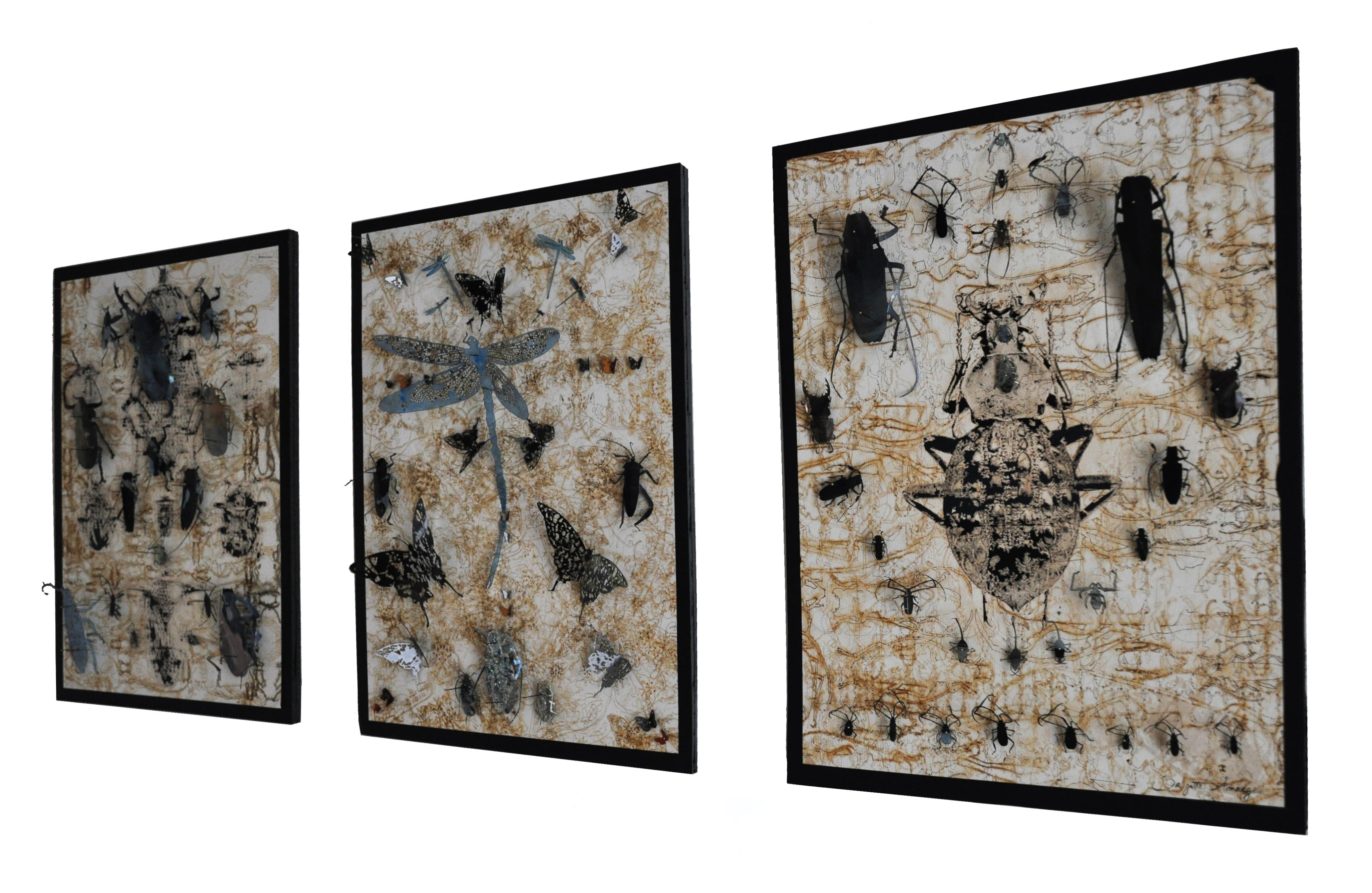 Amarger_artiste_2018_entomologiste-865-tableaux-coté