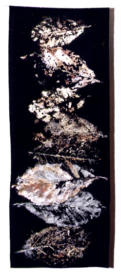 213-feuillesdelumiere-1